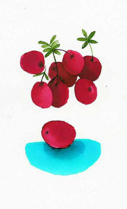 rebecca.033862cranberriesWeb